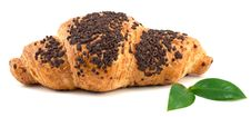 Free Chocolate Croissant Royalty Free Stock Image - 17219096