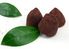 Free Chocolate Truffles Stock Photos - 17219143