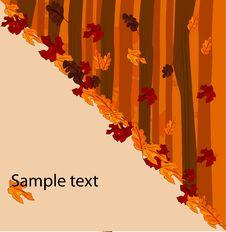 Free Autumnal Concept Background Stock Photos - 17219433