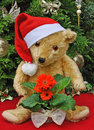 Free Christmas Teddy Royalty Free Stock Images - 17222989