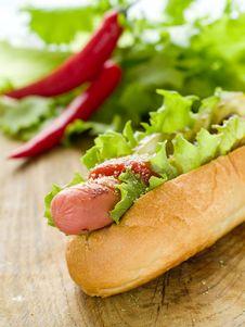 Free Hot Dog Stock Image - 17221271