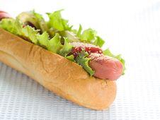 Free Hot Dog Stock Photography - 17221282
