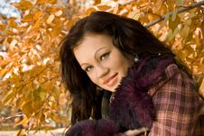 Free Glamour Young Woman Smiles Royalty Free Stock Image - 17223756