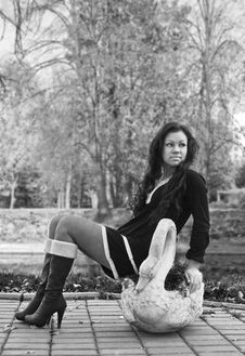 Free Glamour Girl Sits On The Sculpture Of Swan Stock Photography - 17223782