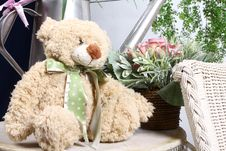 Free Teddy Bear Royalty Free Stock Photography - 17225847