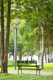 Free Bench In The Park. Royalty Free Stock Photo - 17227255
