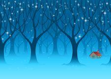 Free Merry Christmas Stock Photo - 17228640
