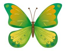 Free A Green Butterfly Isolated.  EPS10 Vector Stock Image - 17229291