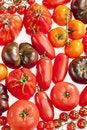 Free Tomatoes Royalty Free Stock Photos - 17236468