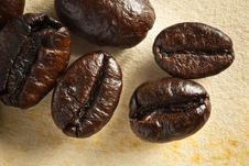 Close Up Coffee Bean On Grunge Paper Stock Images