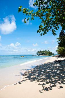 Free Phuket Island Nov 2010 Royalty Free Stock Images - 17232789