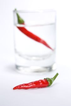 Free Pepper Royalty Free Stock Images - 17233589