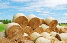 Heap Of Straw Bales In Summer Field Stock Photo