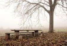 Free Bench In The Garden Royalty Free Stock Images - 17235469
