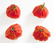 Free Tomatoes Royalty Free Stock Image - 17236446