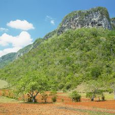 Free Vinales Valley Stock Photo - 17236990