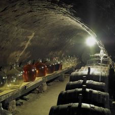 Free Wine Cellar Stock Photo - 17237080