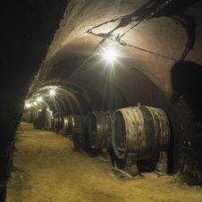 Free Wine Cellar Stock Photo - 17238030