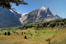 Free Alpine Valley Stock Photo - 17238480