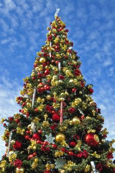 Free Large Decorative Christmas Tree Stock Image - 17240261