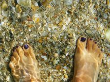 Free Legs In Water Stock Images - 17243604
