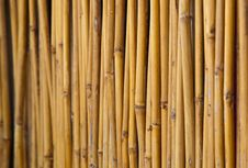 Free Fencing Bamboo Panel Stock Images - 17248114