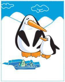 Free Pinguin-2 Royalty Free Stock Photography - 17248697