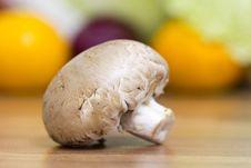 Free Brown Mushroom Stock Images - 17249614