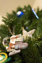 Free Christmas Tree & Ornament Stock Images - 17252144