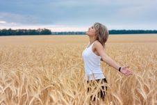 Free A Girl In A Wheat Field Royalty Free Stock Image - 17251166