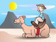 Free Camel Safari Ride Royalty Free Stock Photo - 17251965