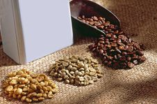 Free Coffee Beans Royalty Free Stock Images - 17252059