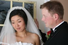 Free Bridal Couple Royalty Free Stock Photo - 17252235