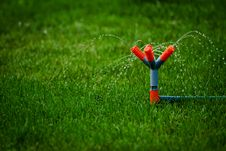 Free Grass Watering Royalty Free Stock Photo - 17253335