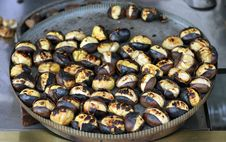 Free Roasted Chestnut Royalty Free Stock Photos - 17253528