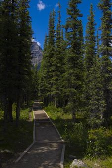 Free Hiking Trail On The Side Of A Mountain Royalty Free Stock Photography - 17253677
