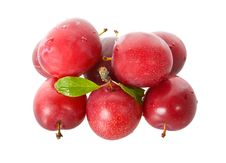 Free Wet Ripe Plums Royalty Free Stock Photography - 17253827