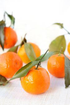 Free Mandarines Stock Images - 17254084