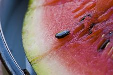 Free Water-melone Stock Image - 17254771