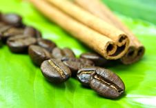 Free Coffee Beans Stock Photography - 17255092