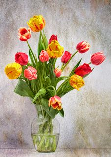 Free Artistic Tulips Stock Photos - 17255103