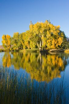 Fall Colors And Lake With Reflection Royalty Free Stock Photo