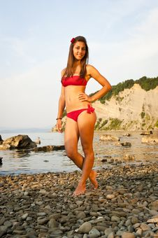 Free Girl On The Beach Royalty Free Stock Photography - 17255927