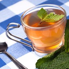 Free Herbal Tea Stock Photography - 17257042