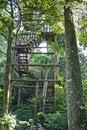 Free Birdwatching Tower Royalty Free Stock Image - 17265856
