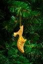 Free Gold Shoe Royalty Free Stock Image - 17266246