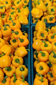 Free Yellow Peppers Royalty Free Stock Images - 17260339