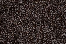 Free Coffee Royalty Free Stock Images - 17261579