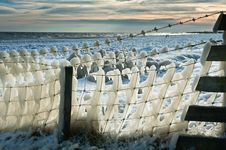 Free Fence Covered In Ice Stock Photos - 17261803
