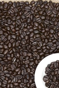 Free Coffee Stock Images - 17261924